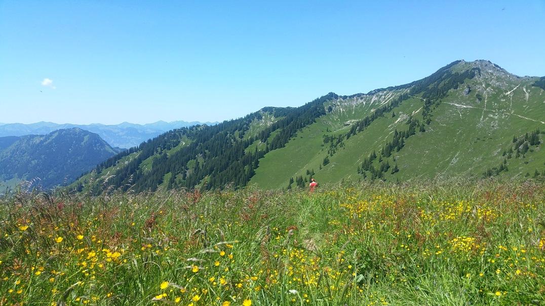 Saftige Bergwiesen vor der Zipfelsalpe