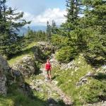 Aufstieg zum Breitenberg bei Pfronten