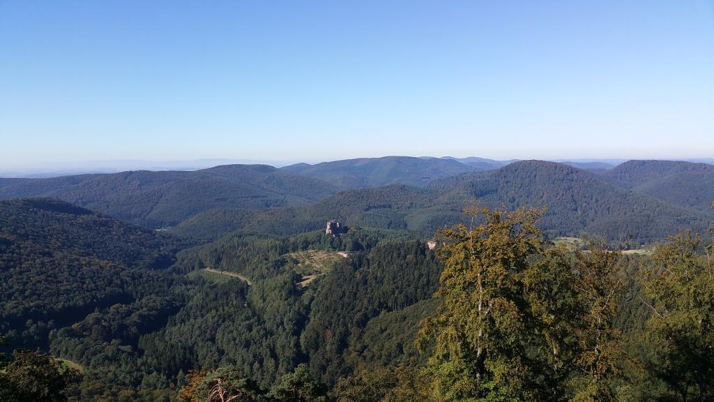 Elsass mit Blick auf Burg Fleckenstein